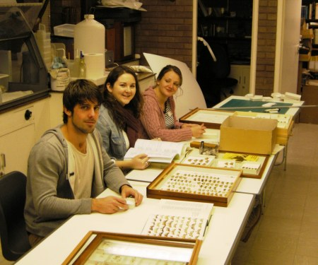 Mark Ashby, Joanne O'Keeffe and Lindsay Selmes, Staffordshire University MSc student volunteers sorting lepidoptera.