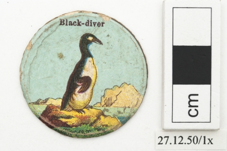 Black-diver playing card (Horniman Museum & Gardens)