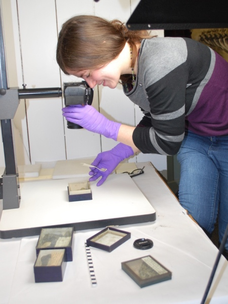 Heather working at Bristol Museum