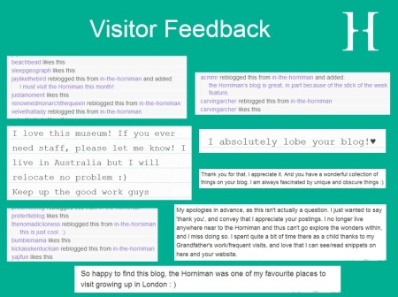 Visitor feedback for In The Horniman Tumblr page