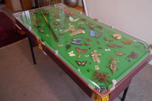 An arthropod-covered snooker table